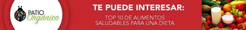 Top 10 de alimentos saludables